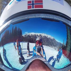 svindal ski alplin