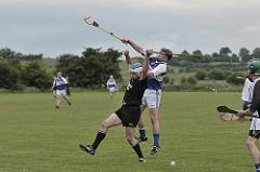 sport irlandais hurling